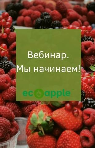 Вебинар видеокурс как сушить от eco-apple