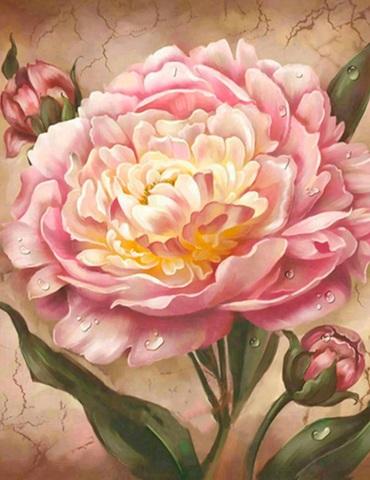 Алмазная Мозаика 38х28 Розовый пион (арт. K1742)