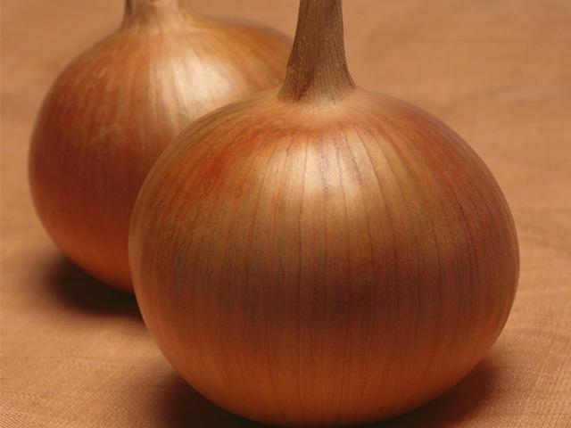 Репчатый Бонус F1 семена лука репчатого (Takii / Таки) Бонус_F1.jpeg