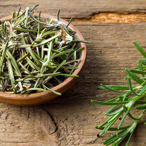 Травы Розмарин лекарственный rosmarinus-leaf-518.jpg