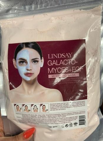 LINDSAY Galactomyces + EGF Modeling Mask