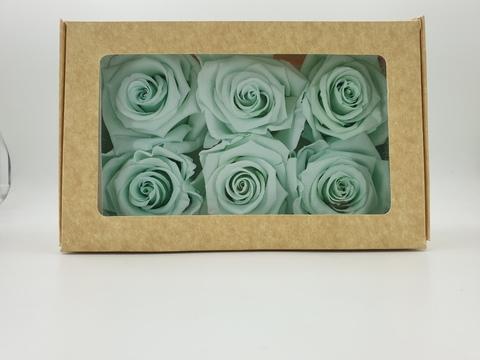 Стабилизированный Бутон Розы Optimum Flowers Standart . Цвет Мятный (Диаметр 7см)
