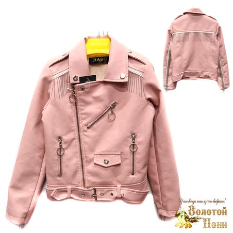 Куртка экокожа девочке (6-11) 200305-T1901.4