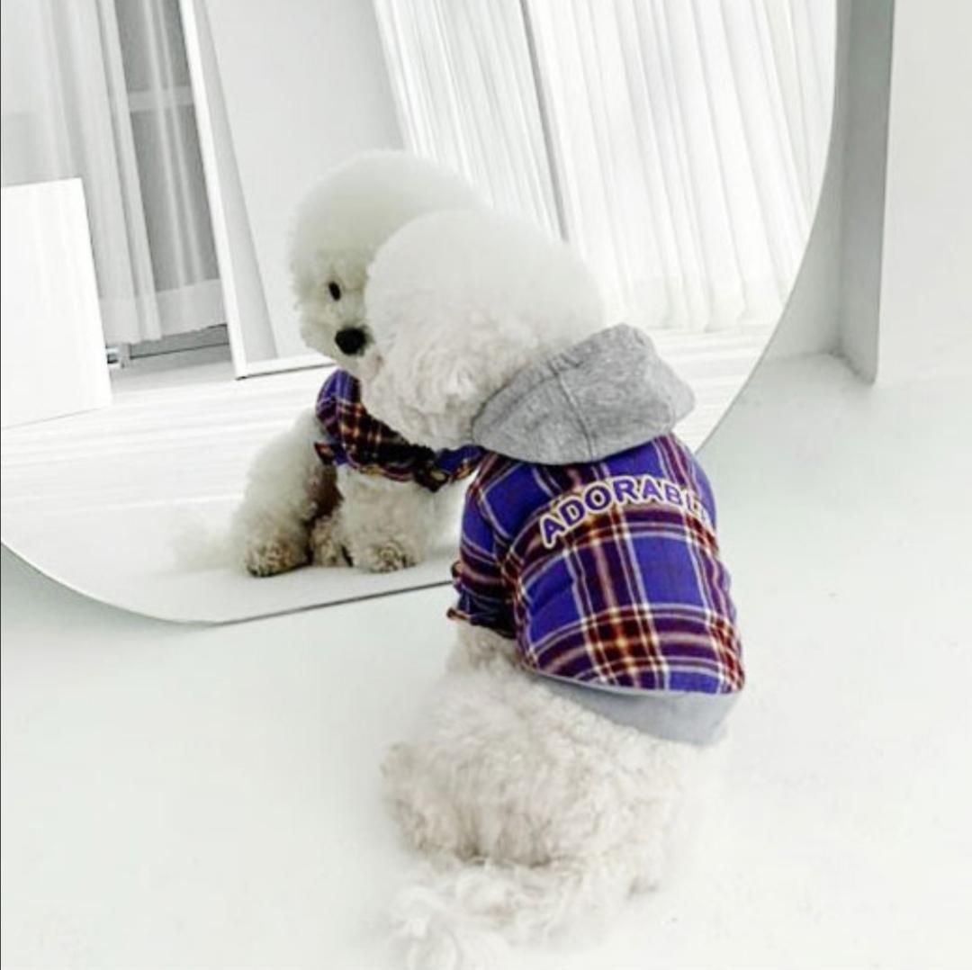 109 PA - Куртки-толстовки для собак