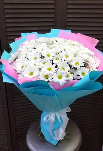 15 кустовых хризантем #18771