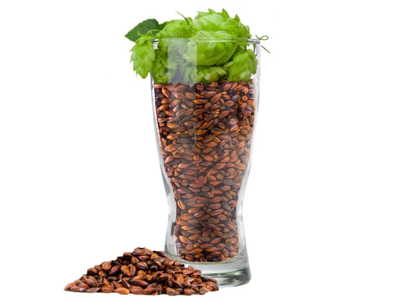 All grain/зерновое пивоварение Набор Пивоварня.ру Nut Brown Ale middle_800_600_20210513_190005061.jpg