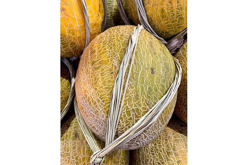 Дыня Узбекская зимний сорт, 1 кг