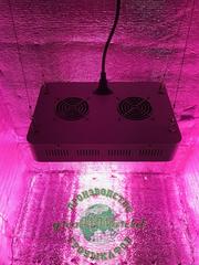 В100хД65хШ40 ГроуБокс 150W LED