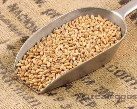Пшеница очищенная