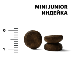 Karmy Mini Junior Индейка, 15кг.