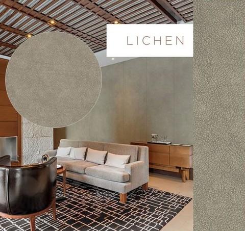 Skin Lichen