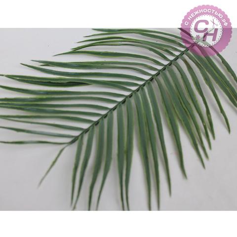 Искусственная зелень  - лист пальмы королевской, 42 см.