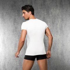 Мужская футболка Doreanse 2545 White