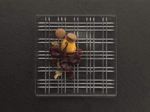 Квадратное блюдо артикул 101046. Серия Square