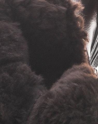 Зимние сапоги на молнии Универсал натуральный мех