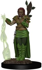 D&D Icons of the Realms Premium Figures: Human Female Druid
