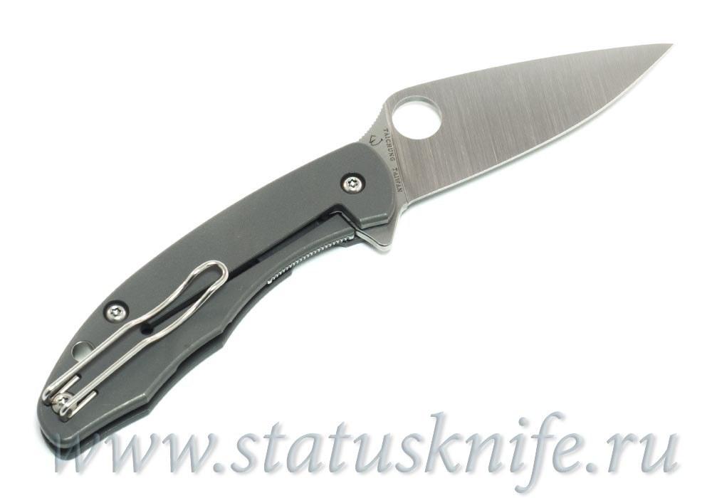 Нож Spyderco Mantra C202TIP - фотография