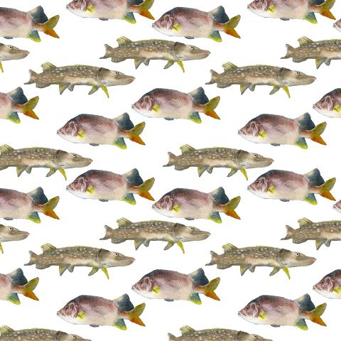 Акварельные рыбы