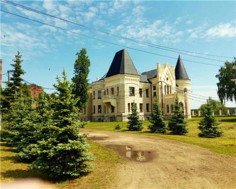 Алмазная Мозаика 40x50 Дом с черной крышей