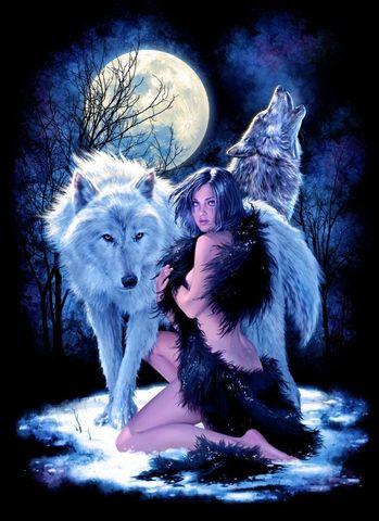 Алмазная Мозаика 20x30 Девушка и волки