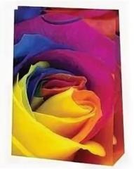 Подарочный пакет Радужная Роза