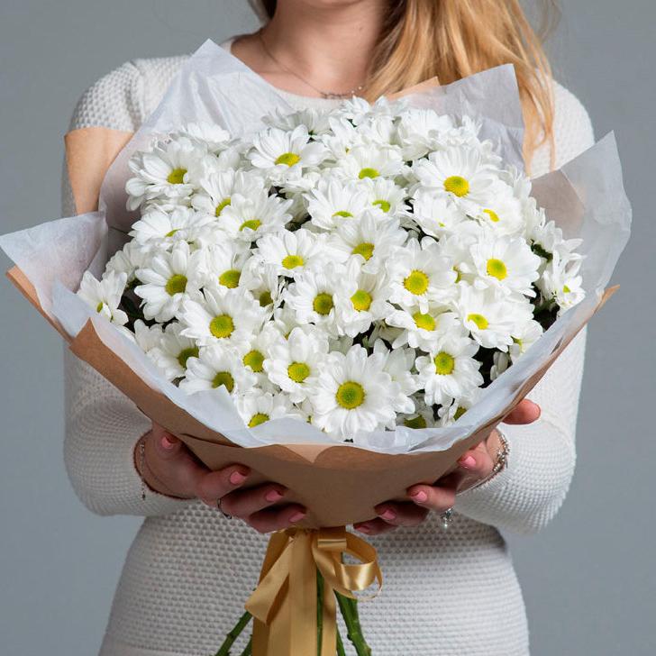 Купить хризантему ромашковую белую в Перми