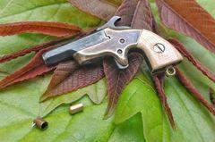 Miniature Southerner Derringer