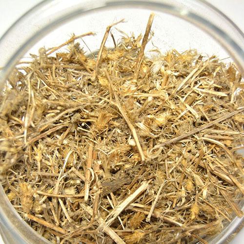 Травы Солянка холмовая salsola-545.jpg