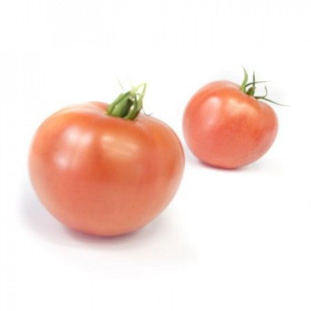 Rijk Zwaan Тивай 12 F1 семена томата индетерминантного (Rijk Zwaan / Райк Цваан) ТИВАЙ_12_F1_семена_овощей_оптом.jpg