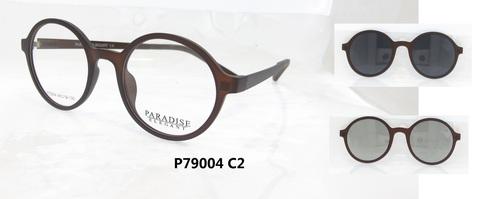 P79004 C2