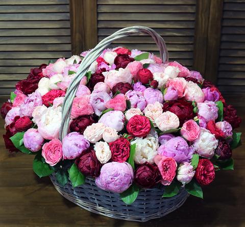 Корзина 101 пион и пионовидные розы