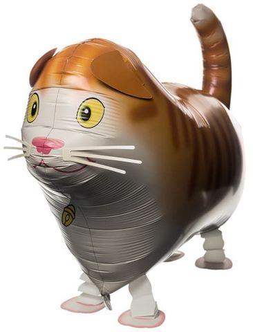 Ходячий шар Кот
