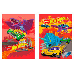 Bloknot Hot Wheels damalı 40 vərəq А7