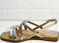 Минималистичные сандалии с квадратным носом босоножки с квадратным каблуком Wollen M.20237D ZS Gold.