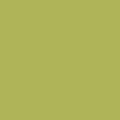 Океан Зеленый