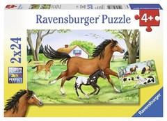 Puzzle World of Horses 2x24 pcs