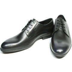 Стильные мужские туфли на свадьбу Ikos 3416-4 Dark Blue.