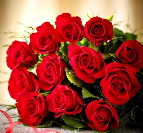 Картина раскраска по номерам 40x50 Красные розы на столе (Без подрамника)