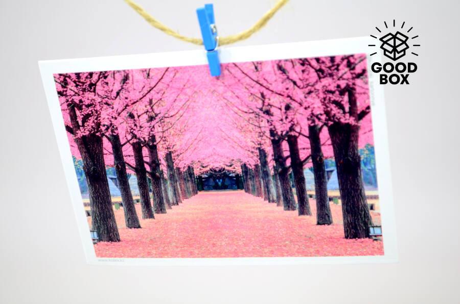 Весенние открытки