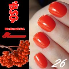 BSG №26 Паменность
