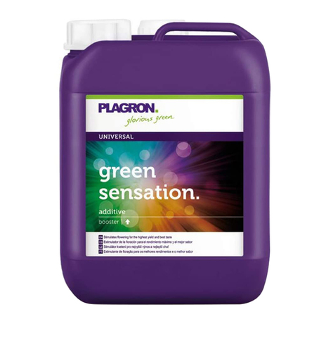 Green sensation 10 L