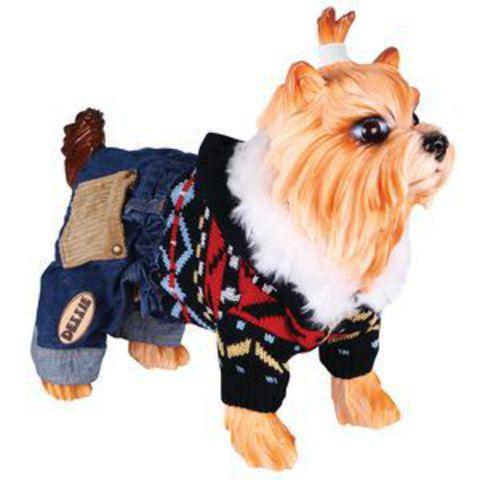 5615046 DEZZIE Свитер д/собак вязаный с капюшоном+синие джинсовые шорты, 30см