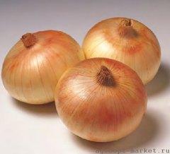 Сеншуй Еллоу Глоб семена лука репчатого (Sakata / Саката)