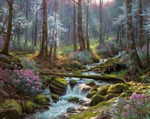 Картина по номерам 40х50 Бурная река в лесу (арт. RA3112)
