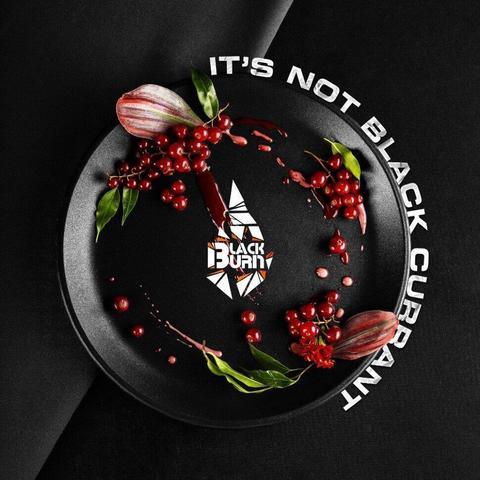 Табак Black Burn Lts not black currant (Красная смородина) 100г