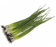 Байя Верде семена лука на перо (Seminis / Семинис)
