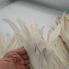 Тесьма  из перьев петуха h 25-30 см, айвори