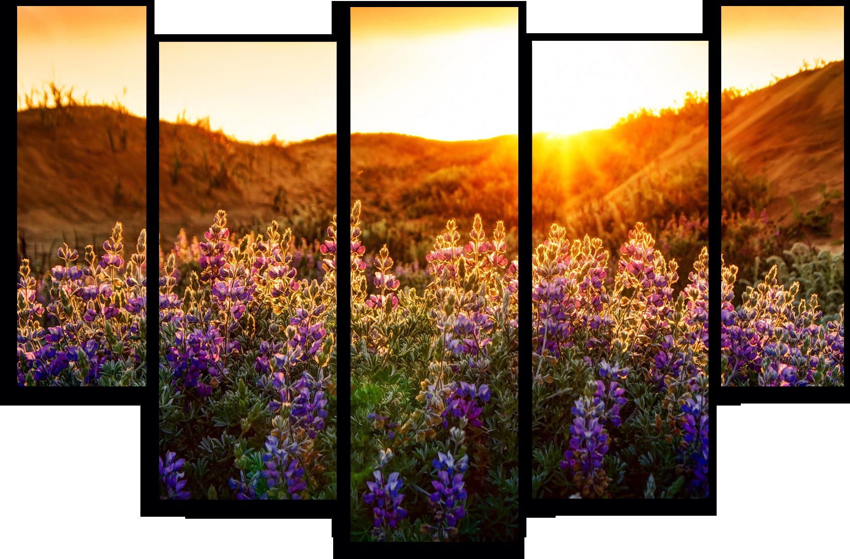 """Природа Модульная картина """"Начало солнечного дня"""" М222.png"""