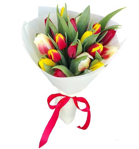 Букет из 17 микс тюльпанов 3
