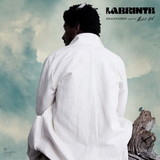 Labrinth / Imagination & The Misfit Kid (LP)